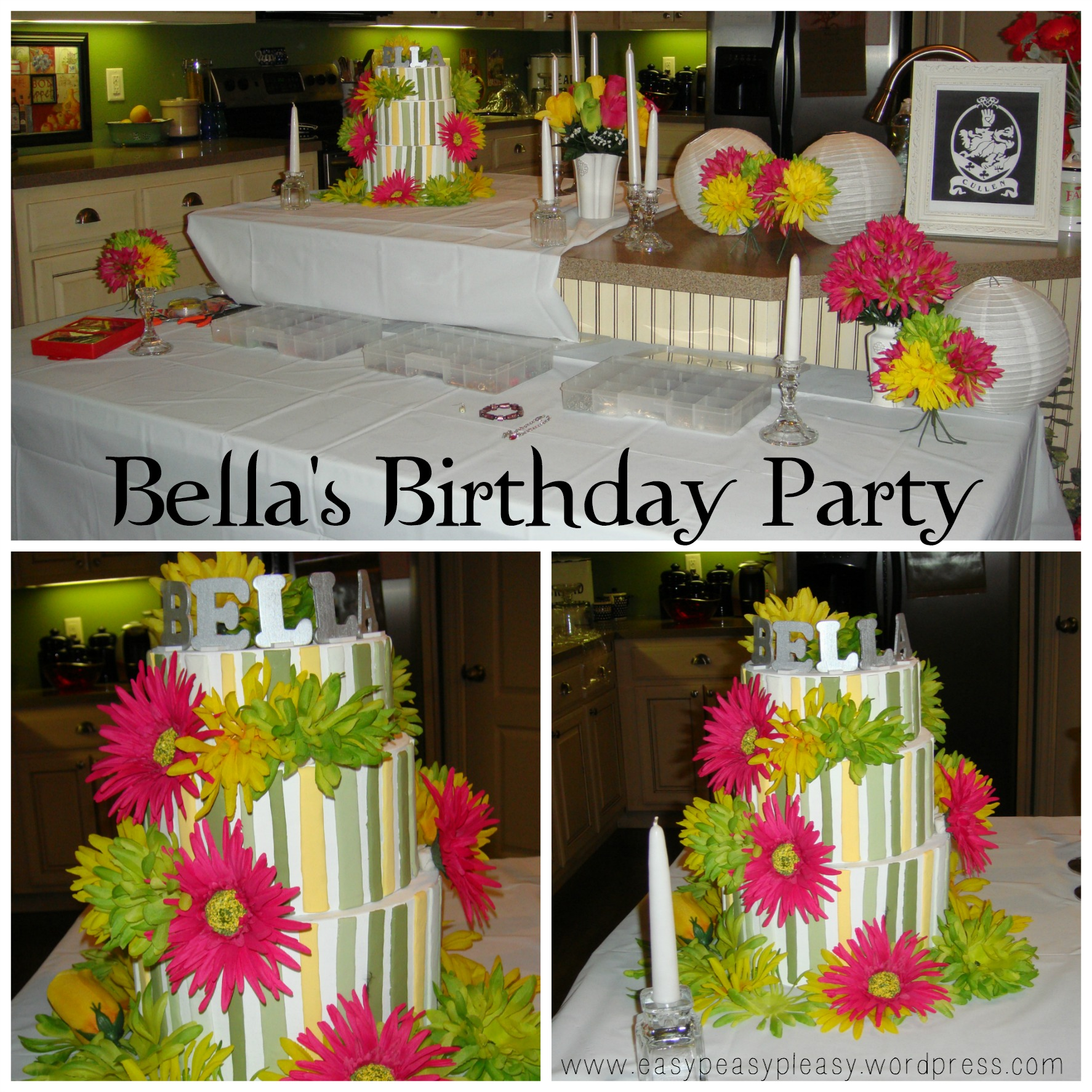 Twilight New Moon Bella's Birthday Party Decor